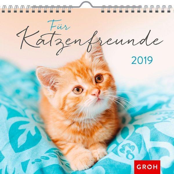Für Katzenfreunde 2019 - Wandkalender