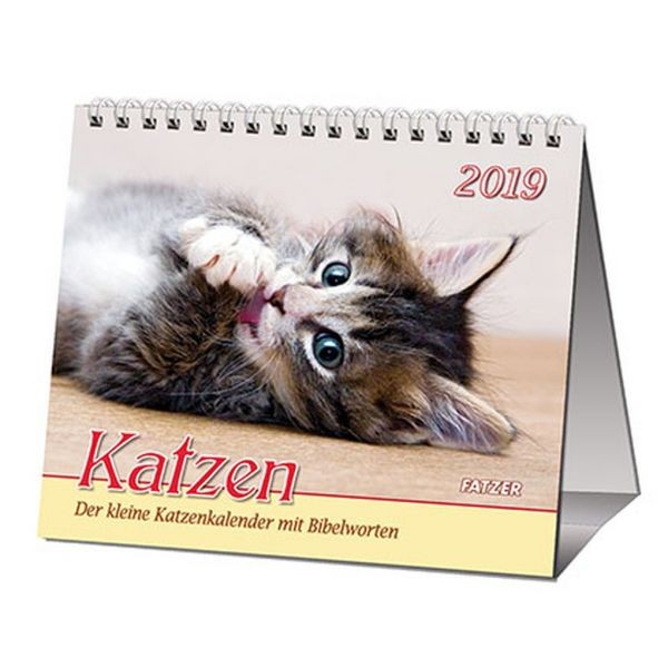 Katzen 2019 -- 2 in 1 Tischkalender