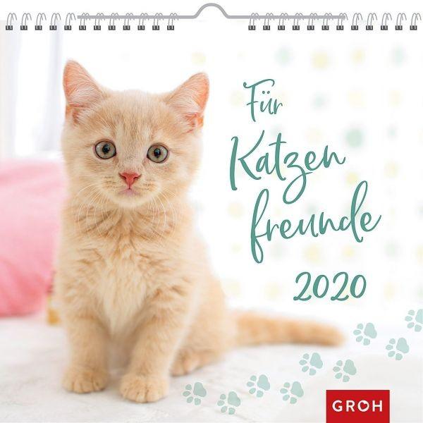 Für Katzenfreunde 2020 - Wandkalender