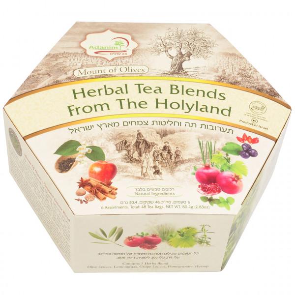 Mount of Olives - Große Tee - Box von Adanim