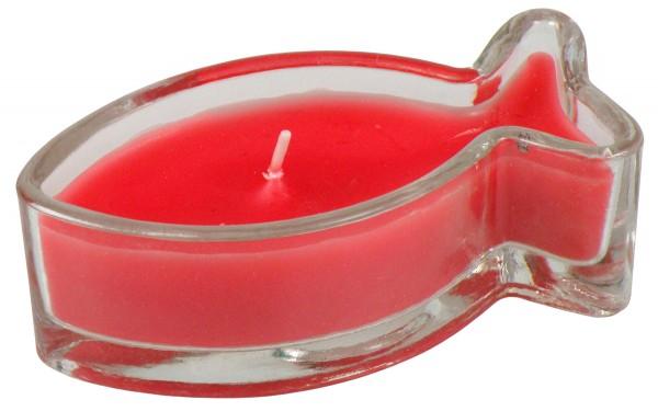 Kerzenglasfisch in Rot
